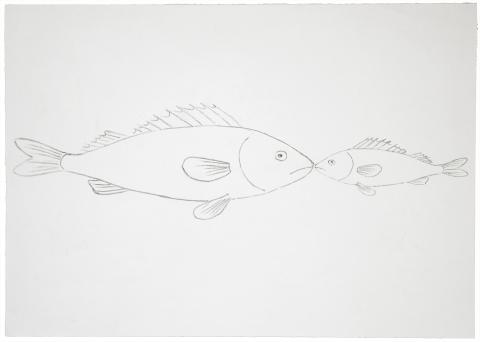Alain Huck, Deux poissons (Animal Beauty), 2001